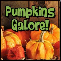 hotbox_pumpkins