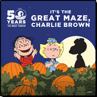 peanuts_graphic